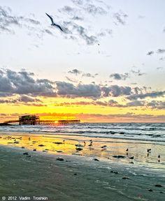Islanders enjoy some of the most fabulous sunrises and sunsets anywhere. Barn Dance, Galveston Island, Dawn And Dusk, Sunset Sea, Beautiful Sunrise, Sunrises, Beaches, Roots, Scenery