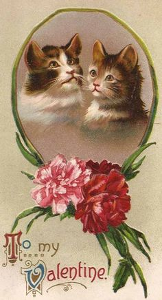 a favorite of course -- cats and flowers! My Funny Valentine, Valentine Images, Valentines Greetings, Vintage Valentine Cards, Cat Valentine, Vintage Greeting Cards, Vintage Holiday, Valentine Day Cards, Vintage Postcards