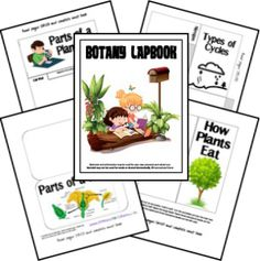 Are you studying Biology this year? Here is a FREE Botany Lapbook. Created to correlate with the The Usborne Internet-linked Science Encyclopedia, but it can be used alone as well.
