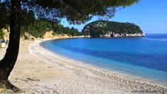 Stafilos Beach at Skopelos island Greece www.skopelosholidays.de