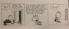 Calvin and Hobbes gets it right again.