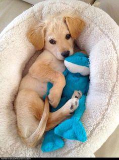 So cozy.