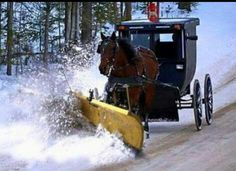 Amish winter—I live in Mennonite country with Amish not too far away. Ontario, Amish People, Amish Pie, Indiana, Ohio, Amish Family, Holmes County, Amish Culture, Farm Plans