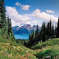 Whistler, BC.  This Summer, woohoo!