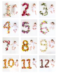 Monthly pictures. Baby girl. Flowers. First year.