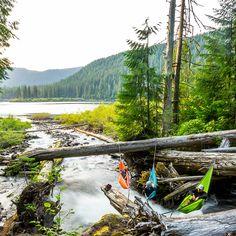 The Ultimate Hammock Lineup Central Cascades, Washington Photo: Mark McInnis