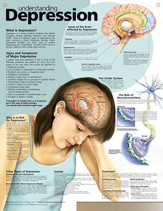 Understanding Depression anatomy poster mental health poster defines three main types of depression and role of neurotransmitters.
