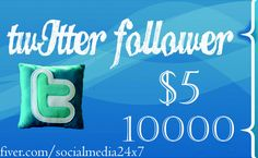 socialmedia24x7: give you 10000 real looking twiiter follower in 24 hrs for $5, on fiverr.com