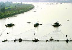 Thủy sản và vấn đề An ninh lương thực   Vietnam Aquaculture Network - Mạng Thủy sản Việt Nam