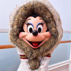 Disney Cruise Line - Alaska Disney Cruise Line, Disney Parks, Walt Disney World, Disney Worlds, Disney Love, Disney Magic, Mickey And Friends, Mickey Minnie Mouse, Disneyland Paris