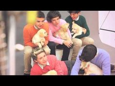 Them with puppies again!!!! One direction behind the scenes of wonderland magazine: teaser