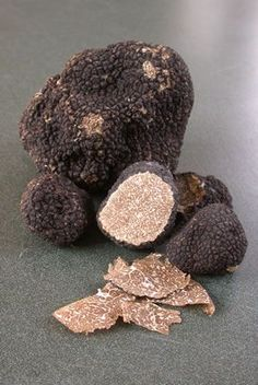 I think I want to give truffle farming a try. I'm in the heart of excellent weather for it, so why not!?