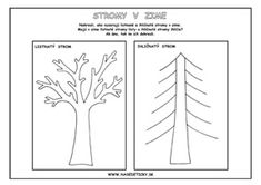 Kindergarten, Earth Day, Elementary Schools, Education, Autumn, Halloween, Plants, Fall Season, Primary School
