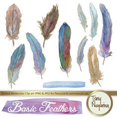 Bird Feathers and Gold clip art images watercolor hand painted PNG transparent background Instant Download for blog cards invitations on Etsy, $53.33