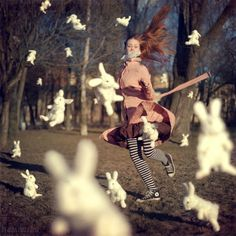 降りしきるウサギ。