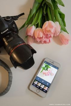 Team Wiking | How To Use A Camera On Instagram | http://www.teamwiking.com