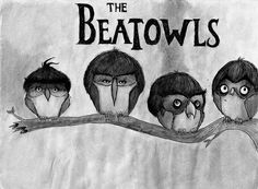 The Beatowls funny music drawing lol illustration owl beatles rock n roll Jasper Johns, The Beatles, Beatles Art, Beatles Funny, Richard Hamilton, The Wombats, Owl Always Love You, Funny Bunnies, Funny Owls