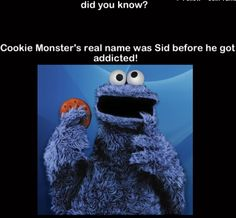HTTP cookies, more commonly referred to as Web cookies, tracking cookies or just cookies, are parcels of text sent by a server to a Web clie. Real Facts, Wtf Fun Facts, True Facts, Funny Facts, Crazy Facts, Random Facts, The More You Know, Did You Know, Muppets Most Wanted