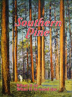 Southern Pine, c. 1922.  From the Association for Preservation Technology (APT) - Building Technology Heritage Library, an online archive of period architectural trade catalogs. It contains hundreds of old house plan catalogs. Select your era and flip through the pages.