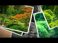 http://gardeninghorticulture.com/index-z-builder54.htm GARDENING - HORTICULTURE - gardening information, gardening tips, gardening ideas, water butts, rain water harvesting and many other gardening