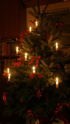 All the Christmas trees in Czech Republic were always lit up with real candles - and I do not know of one instance where the tree would catch on fire!