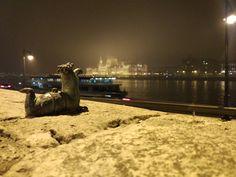 Budapest on a foggy night