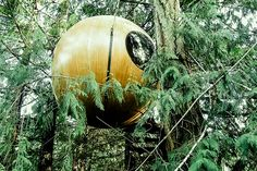 Floating in a grove of cedar and maple trees, the Free Spirit Spheres offers treehouse accommodations in the rainforest of Vancouver Island. Each of the three suspended domes varies in size and comes equipped with sleeping for two, a dining...