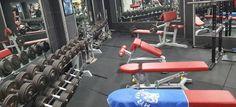 Power Gym gimnasio Benidorm   NOTICIAS Gym Equipment, Burn 100 Calories, Gym Training, Goal Body, Squats, News, Workout Equipment