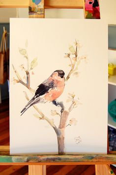 Serie en Acuarela - Aves - de Carolina Costa Jungjohann - Artista Chilena