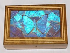 Vintage Morpho Brazil Real Butterfly Jewelry Box Inlaid Wood Estate Find (2)  | eBay Butterfly Jewelry, Butterfly Wings, Brazil, Jewelry Box, Wood, Artwork, Painting, Vintage, Ebay