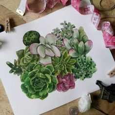 These were fun! Took me a long time but oh-so-very fun 😊 This is artwork # 8 of the gallery wall project for a friend. And now I tackle the Hitchcock papercut piece. Saved the best for last 😜 . Watercolor Paper, Watercolor Paintings, Watercolors, Cacti And Succulents, Watercolor Succulents, Kuretake Gansai Tambi, Cebu, Paper Cutting, Philippines