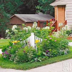 Banish front-yard blahs by installing this easy corner-fence garden of fast-growing flowers.