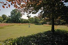 tuin tuinontwerp tuinarchitect hovenier hoveniersbedrijf tuinaanleg beplanting beplantingsplan onderhoud landelijke tuinen gazon rode beuk zonnewijzer klaprozen