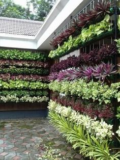 The recent trend of vertical gardening is becoming increasingly rife as gardeners channel their inspiration to new heights of creativity #diy_verticalgarden #verticalgarden_ideas #diygarden #gardendesign #gardenideas #verticalgarden