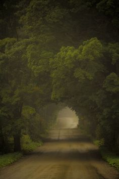 Mysterie lane - photography by Jacques-Andre Dupont