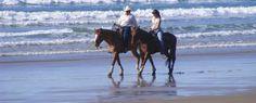 Horseback Riding on Grover Beach