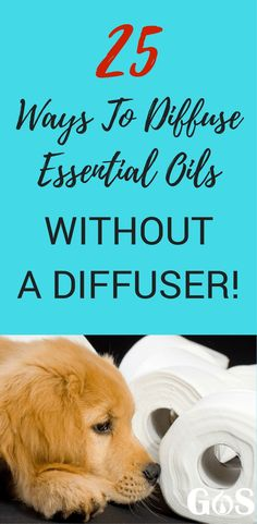 How to Diffuse Essential Oils Without a Diffuser - 25 Ways Complete Guide DIY Diffuser 25 Ways To Diffuse Essential Oils Without A Diffuser A Complete Guide For Cheap DIY Diffusing! Are Essential Oils Safe, Essential Oil Diffuser Blends, Essential Oil Uses, Young Living Essential Oils, House Essentials, Baby Massage, Pure Products, Beauty Products, Doterra Oils