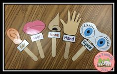 Five Senses - Sense Sticks from The Teaching Zoo!