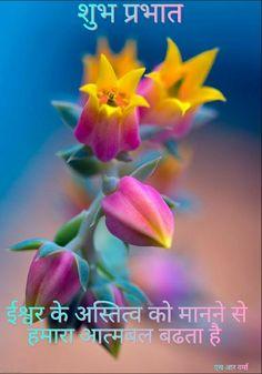 Watercolor Wallpaper Iphone, Iphone Wallpaper Fall, Flower Wallpaper, Exotic Flowers, Amazing Flowers, Pink Flowers, Beautiful Flowers, Echeveria, Flower Images