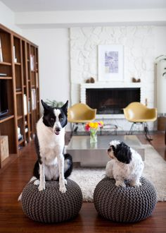 a house in the hills - interiors, style, food, and dogs