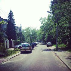 Zielone Bielany na ul. Fontany.