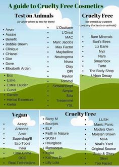 Personal Life- beauty and makeup  List of cruelty free products- helpful and good to know!