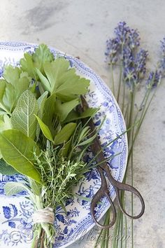 Now is the time to harvest those herbs from your garden. Making a little bundle of fresh herbs (a bouquet garni) is so easy and it transforms all your soups and sews and sauces to gourmet status instantly. Try it, you won't believe the difference in taste.