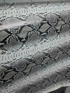 Snake gray