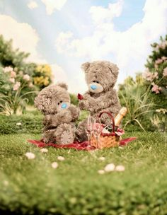 is endless blue nose friends, cute teddy bears, love bear, tatty Teddy Bear Pictures, Blue Nose Friends, Cute Couple Quotes, Love Bear, Cute Teddy Bears, Tatty Teddy, Winter Pictures, All Things Cute, Friend Pictures