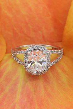 Bella Vista Engagement Ring - A gorgeous halo engagement ring with a Oval cut center!