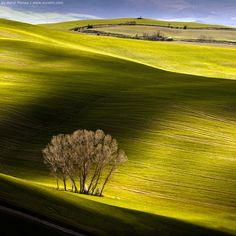 'Third Day of Autumn' Tuscany, by Aurel Manea