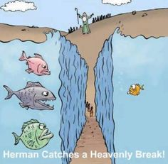 JR's Humor Pages - Passover - A Heavenly Break