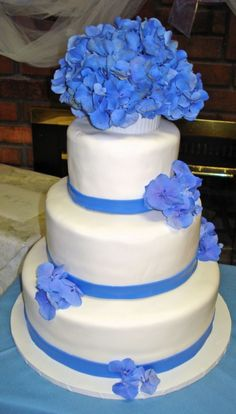 some aspects of what i think our cake is going to look like... (image from cakecentral.com)
