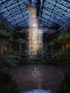 Bruce Munro at Longwood Gardens; light installations around the gardens and inside were fabulous; summer 2012